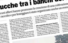 """""""Sale in Zucca"""": Rassegna stampa e media"""